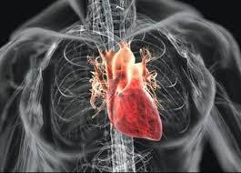 лечение опухолей сердца в Израиле
