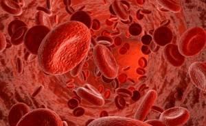 лечение тромбоцитопении в Израиле