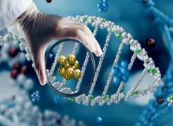 molekularnaya-diagnostika-raka-v-germanii-wb